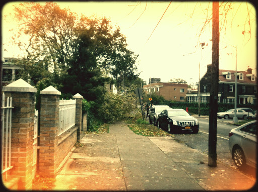 Storm Sandy's Aftermath
